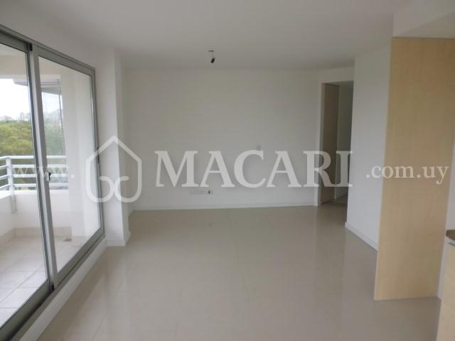 P1110363 -macari