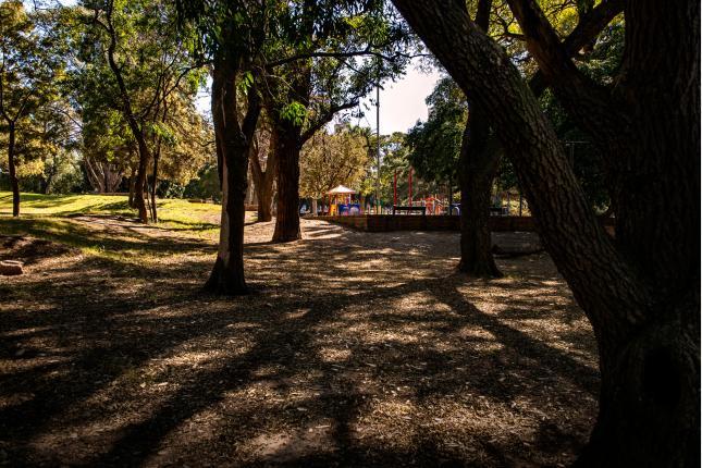 Parque Batlle2
