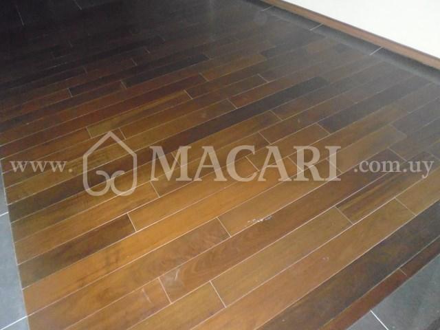 P1170376 -macari