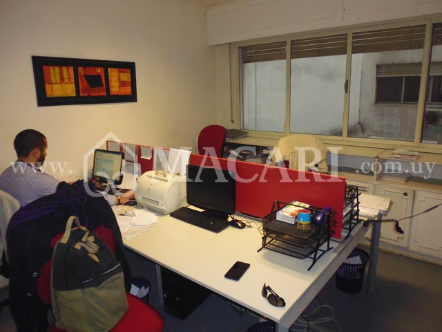 P1140675 -macari