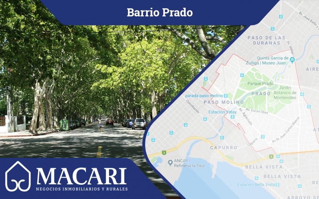 Prado, vivir entre espacios verdes