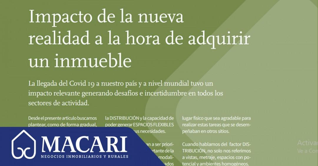 Revista Ciudades, edición núm. 81